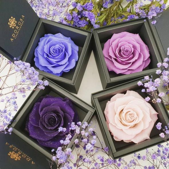 adorosa diamond collection