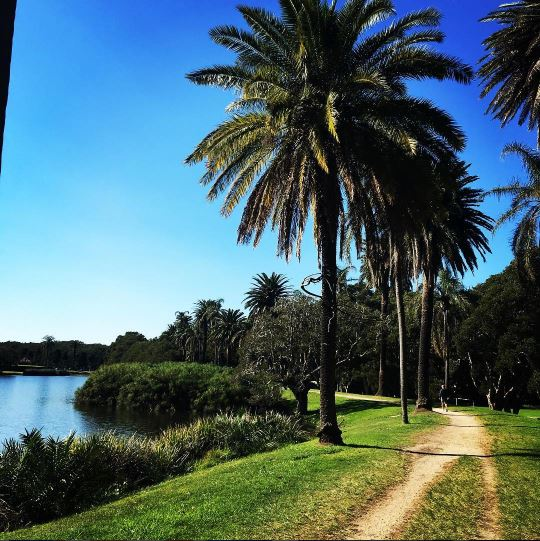 the best running spots in sydney - centennial park