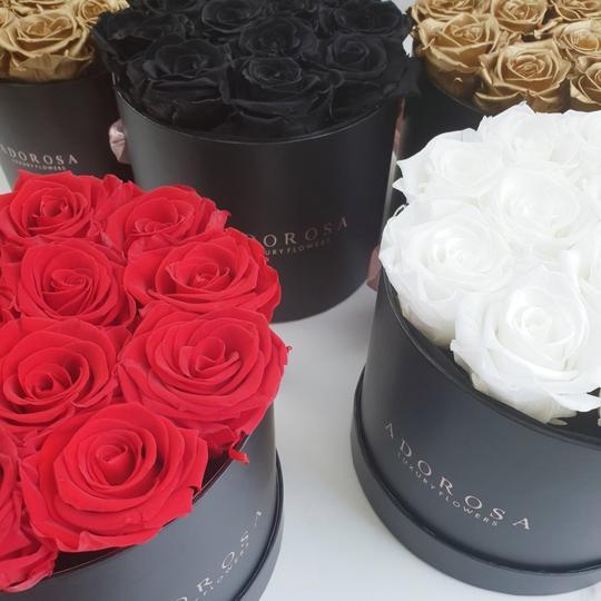 adorosa classic rose box