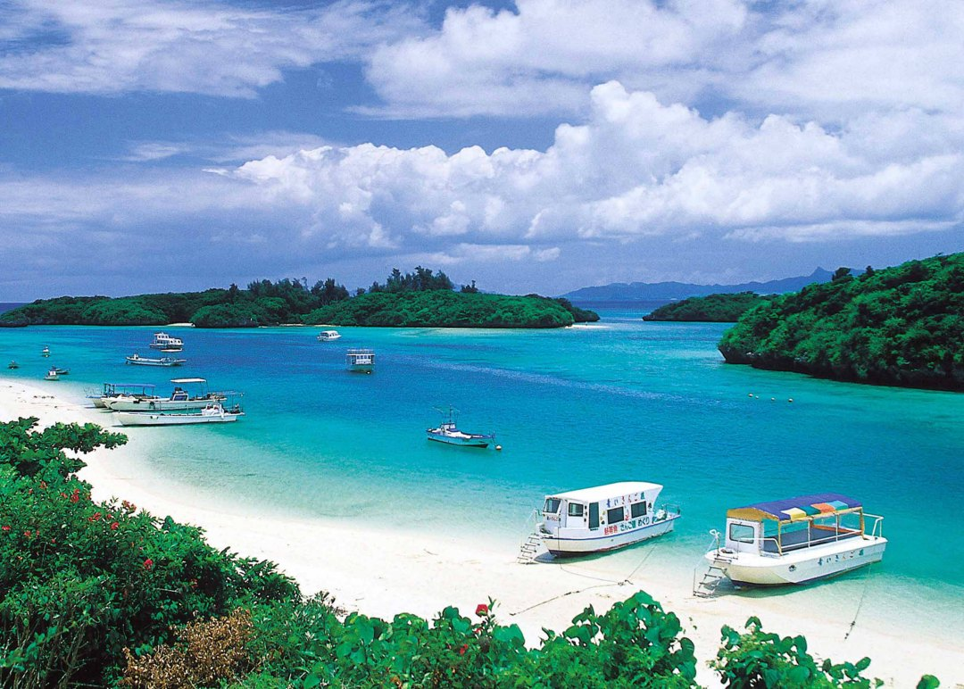 Okinawa centenarian essays