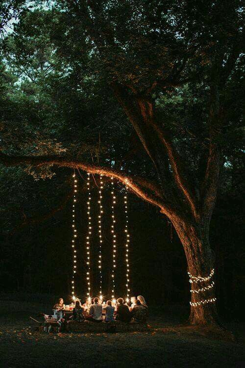 festoon lighting tree lighting