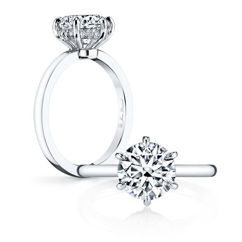 engagement ring guide 5