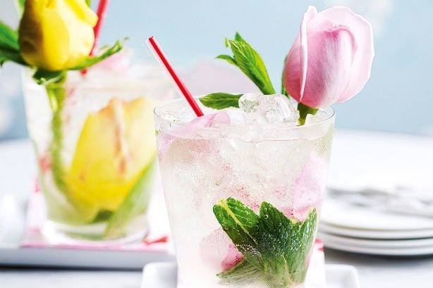 Rose_and_Gin_Cocktail