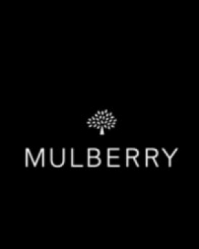 The Art Of Mulberry: The Del Rey Bag